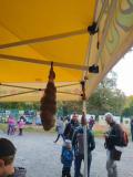 Stromovy-festival-05